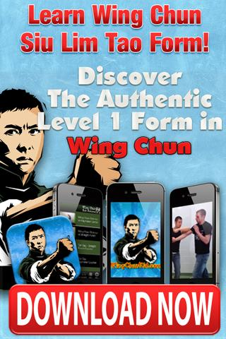 WingChun 1 - Siu Lim Tao Form - screenshot
