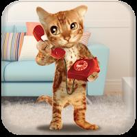 Cat Caller 2.1