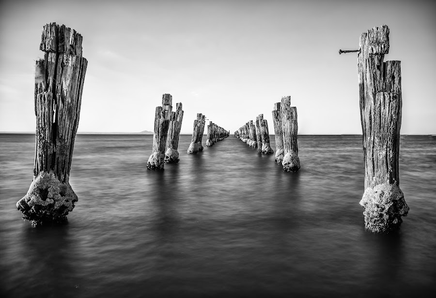 posts by Alan Wright - Landscapes Beaches