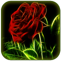 Flower live wallpapers icon