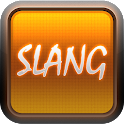 English Slang Dictionary icon