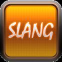 English Slang Dictionary icon