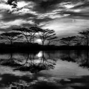 Sunrise by Sandi Kun - Black & White Landscapes