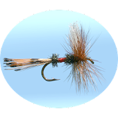 Fly Fishing Simulator