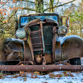 Chevy Front End by Alan Roseman - Transportation Automobiles ( chevy truck, rusted, chevy nose, chevy, front end, decay, abandoned,  )