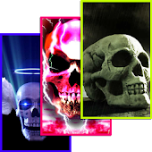 Skulls HD Wallpapers