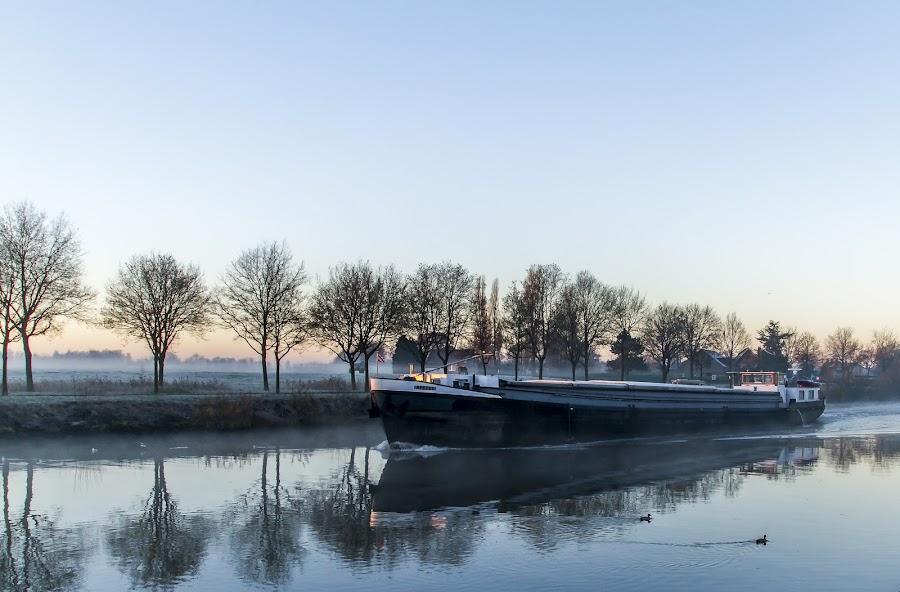 Boat in de morning by Dimitri Haeck - Landscapes Waterscapes ( water, boot, vorst, schip, frost, boat, morning, ochtend, bird, winter, blue, trees, bomen, vogel, blauw )