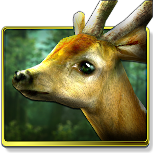 download Forest HD apk