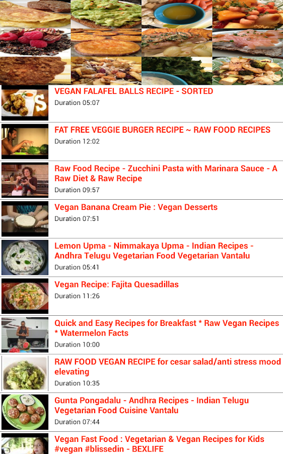 Vegan Food Recipes - screenshot