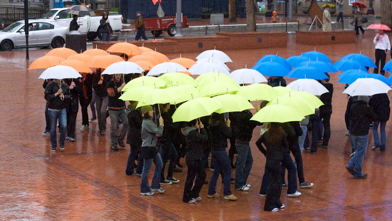 An umbrella dance troupe performs in Portland, Oregon.