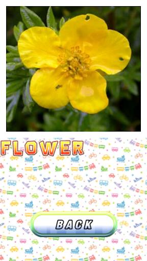 玩教育App|英语为中国孩子 - 免费的词汇和单词免費|APP試玩