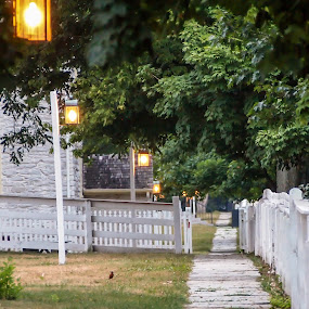 A Shaker Path by Steve Hall - City,  Street & Park  Historic Districts ( shaker village )