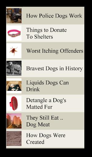 Dog Lists