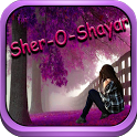 Hindi Sher-O-Shayari Love/Sad icon