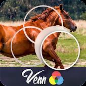 Venn Horses: Circle Jigsaw