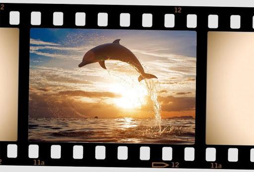 電影相框|玩攝影App免費|玩APPs