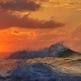 The Last Splash by James Bokovoy - Landscapes Waterscapes ( kauai, waves, pacific ocean, ocean, surf, hawaii )