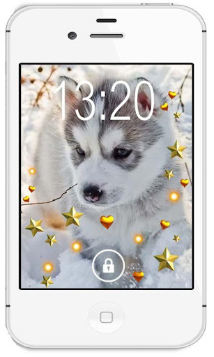 Husky Puppies live wallpaper