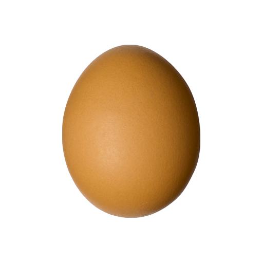 Raja telur di indonesia LOGO-APP點子
