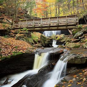 Crossing Kitchen Creek by Tim Devine - Landscapes Waterscapes ( falls trail, autumn, kitchen creek, glen leigh, pennsylvania, bridge, ricketts glen, fall, color, colorful, nature,  )