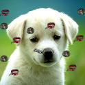 Puppy Live Wallpaper 2 logo