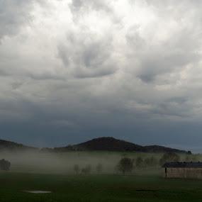 Morning mist by Dan Bartlett - Landscapes Weather (  )