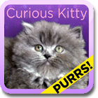 Curious Kitty Live Wallpaper icon