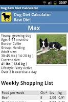 Screenshot of Dog Raw Diet Calculator