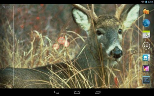 Deer Hunting Live Wallpaper - screenshot thumbnail