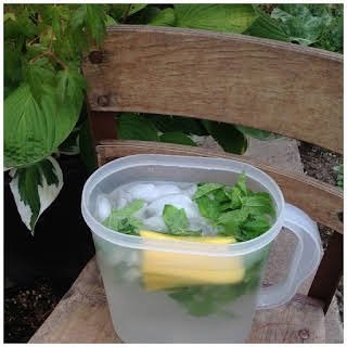 Pineapple and Mint Infused Water Recipe Infused Water - Spa Water - Flavored Water.