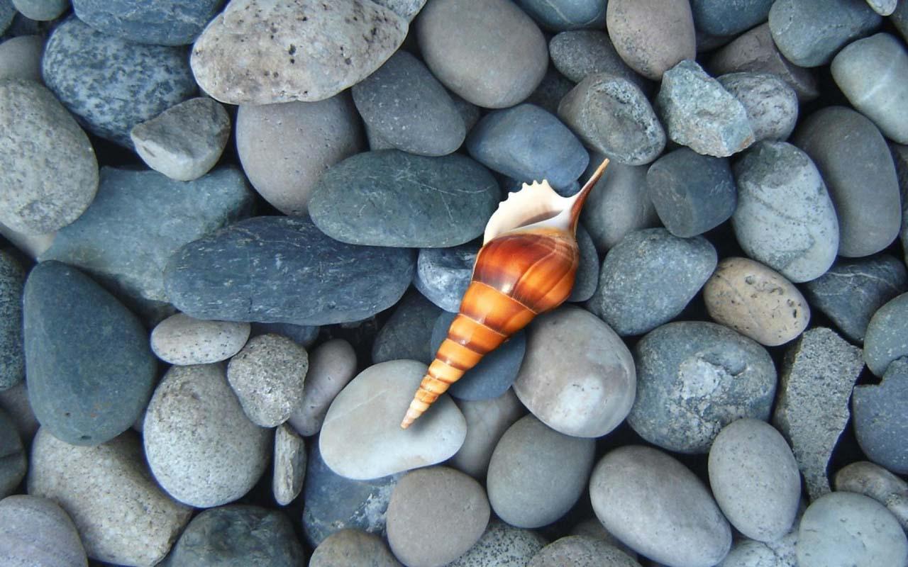pebble beach theme wallpaper  google play store revenue  - screenshots