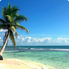 Beach Live Wallpaper HD icon