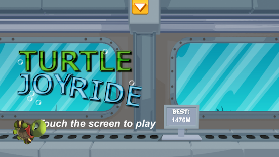 Turtle Joyride