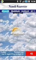 Screenshot of Saudi Gazette