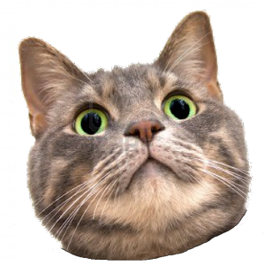 the gallery for gt cat head png