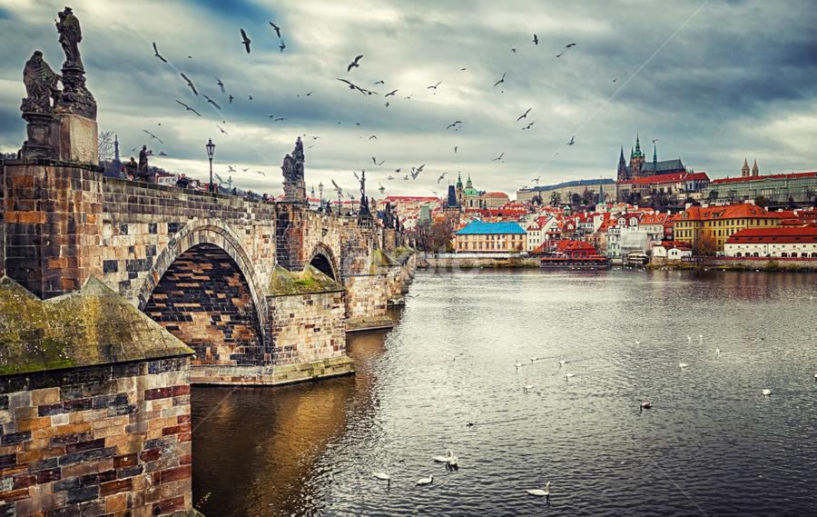 by Nermin Smajić - Landscapes Travel ( sky, vltava, dramatic, bridge )