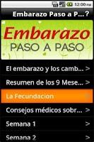 Screenshot of Embarazo Paso a Paso