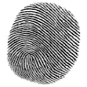 Mobile Detective logo