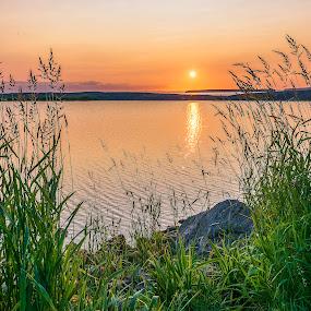 Sunset Through the Grass by Gordon Follett - Landscapes Sunsets & Sunrises ( water, nature, grass, sunset, landscape, sun,  )