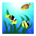 Fish Pond Live Wallpaper icon