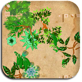 A-Memory Garden 2.0
