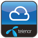Telenor Space