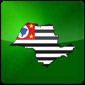 Campeonato Paulista 2015
