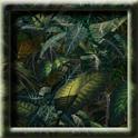 Plants Animated LWP logo
