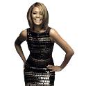 Whitney Houston widgets logo