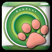 BowShot
