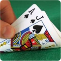 BlackJack Counting Master Pro icon