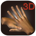3D Chinese Hand Acupuncture logo
