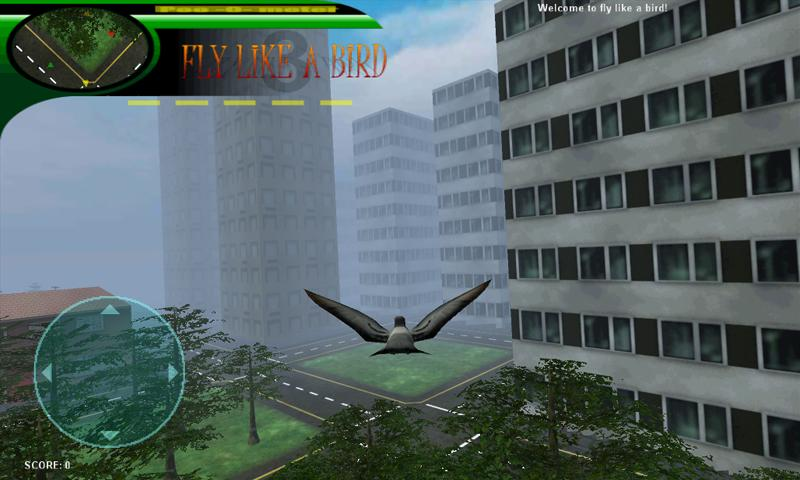 free flying bird games