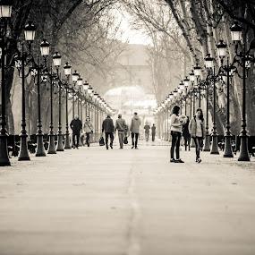 Sunny afternoon by Stefan Ungureanu - City,  Street & Park  City Parks ( monochrome, park, black and white, street, photo of the month, best photo, photo of the day, people, photography, street photography )